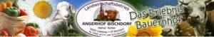 angerhof-bischdorf